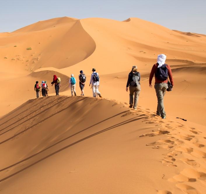 carre site maroc